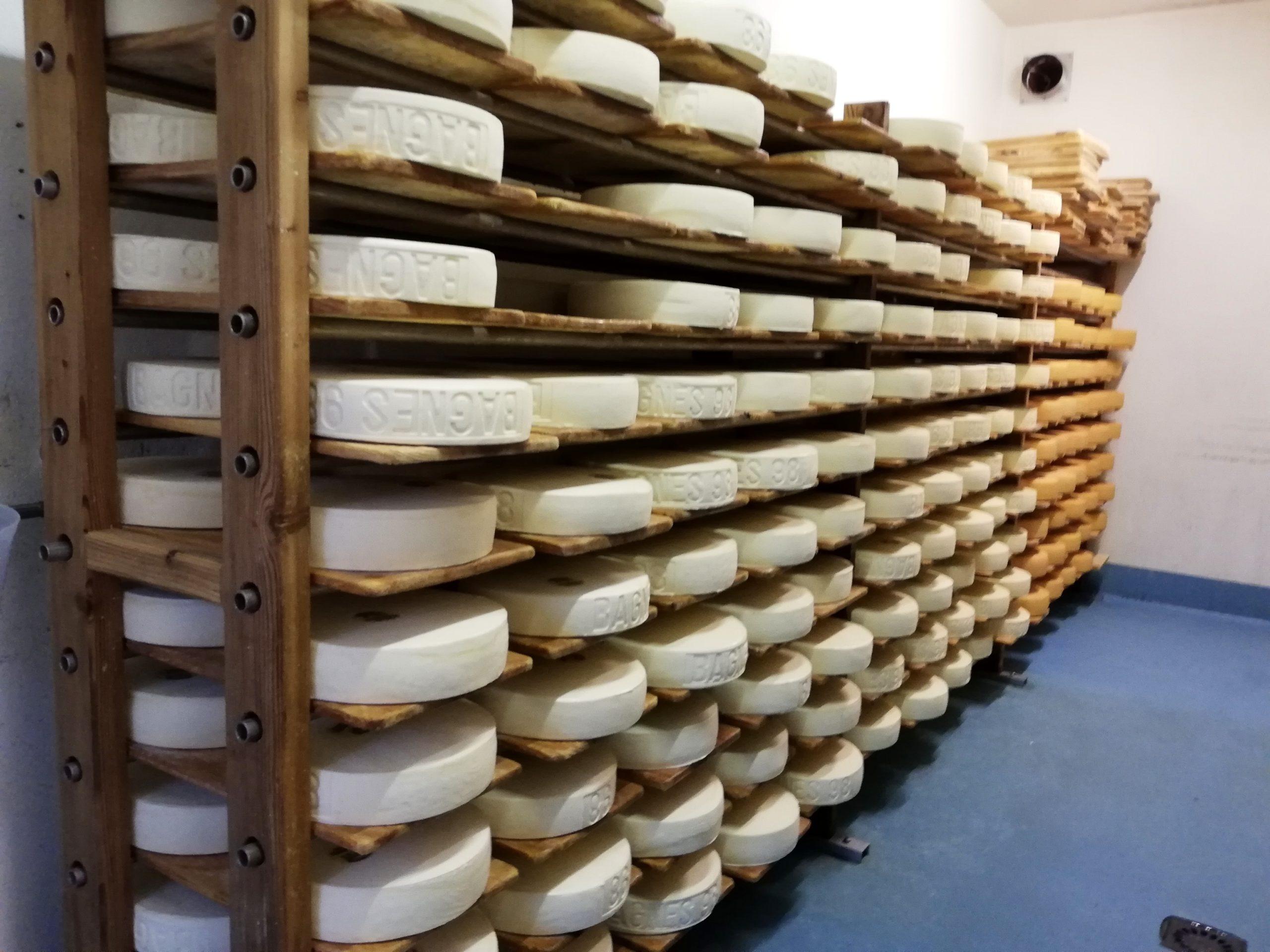 Affinage des tommes et raclettes fromagerie Etiez Vollèges Suisse