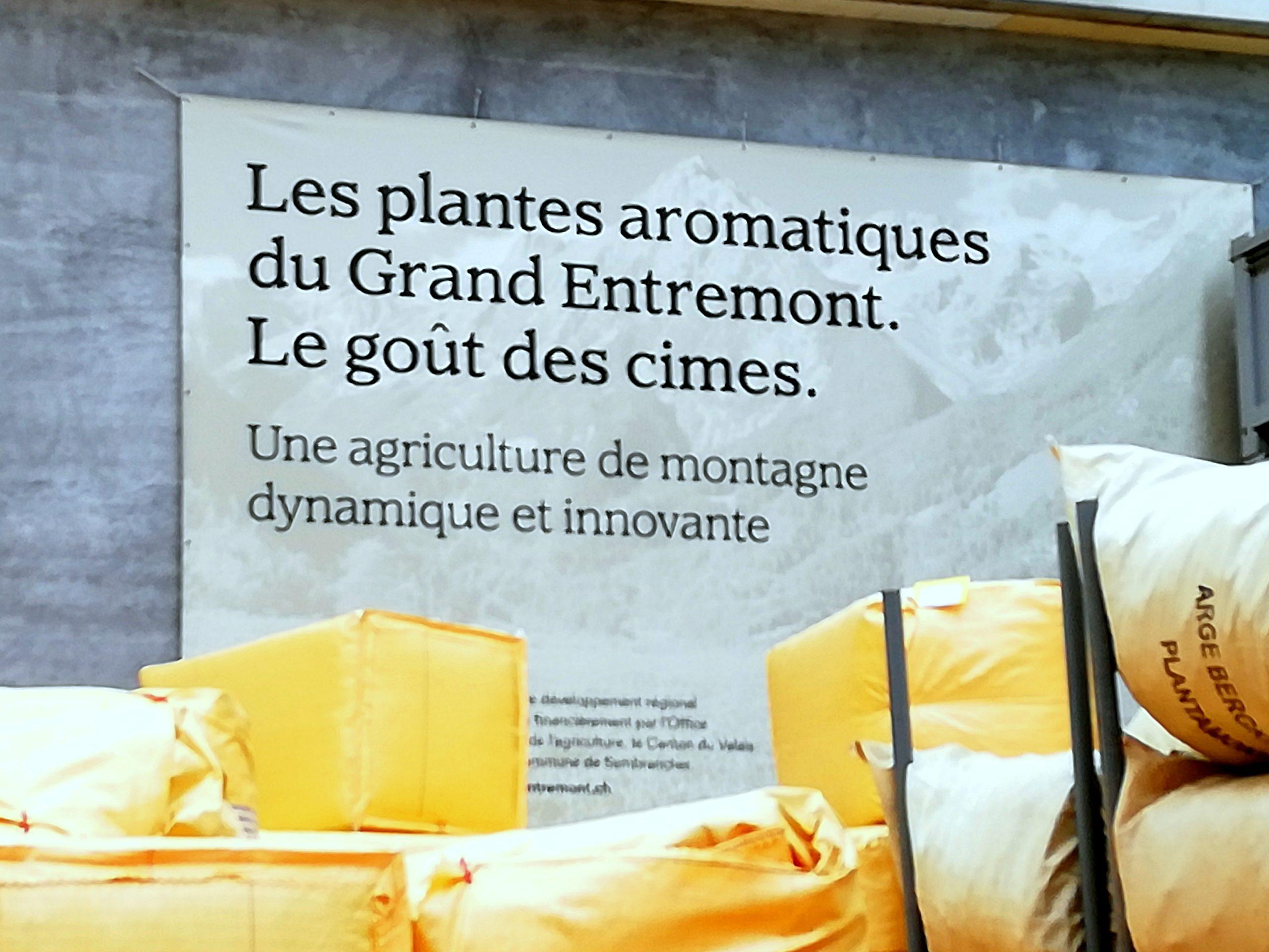 Ballots de plantes aromatiques Valplantes Suisse