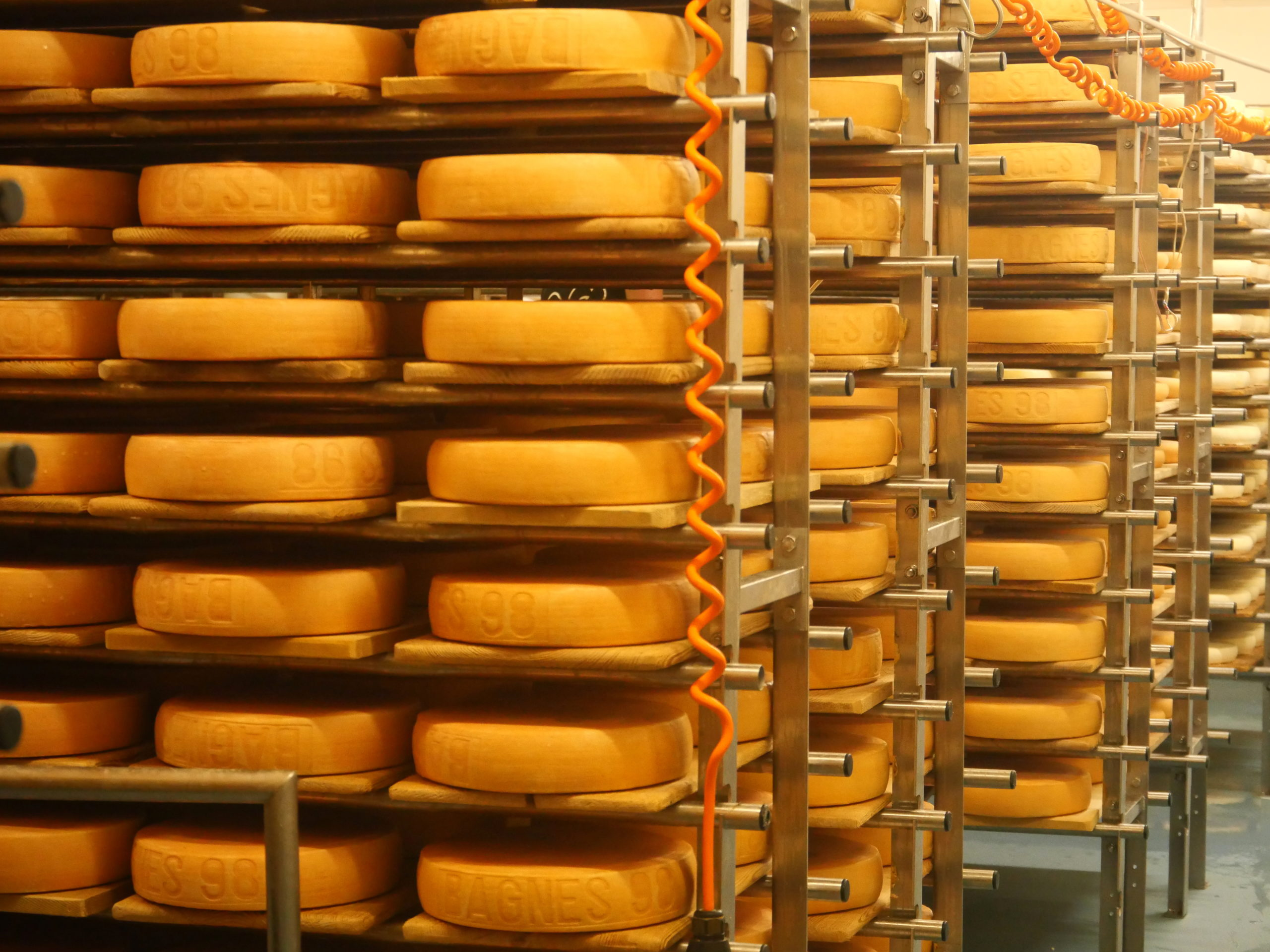 Slow Food Travel tommes dans les caves d'affinage fromagerie d'Etiez Valais SuisseJPG