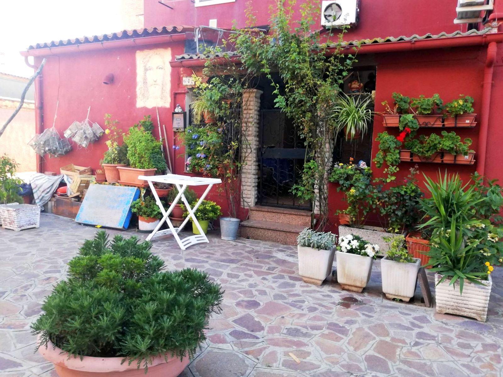 Visiter Burano et ses petits jardins