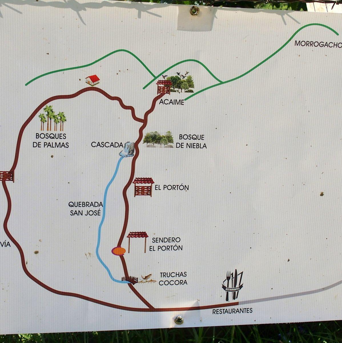 Itinéraires vallée de Cocora Salento Colombie