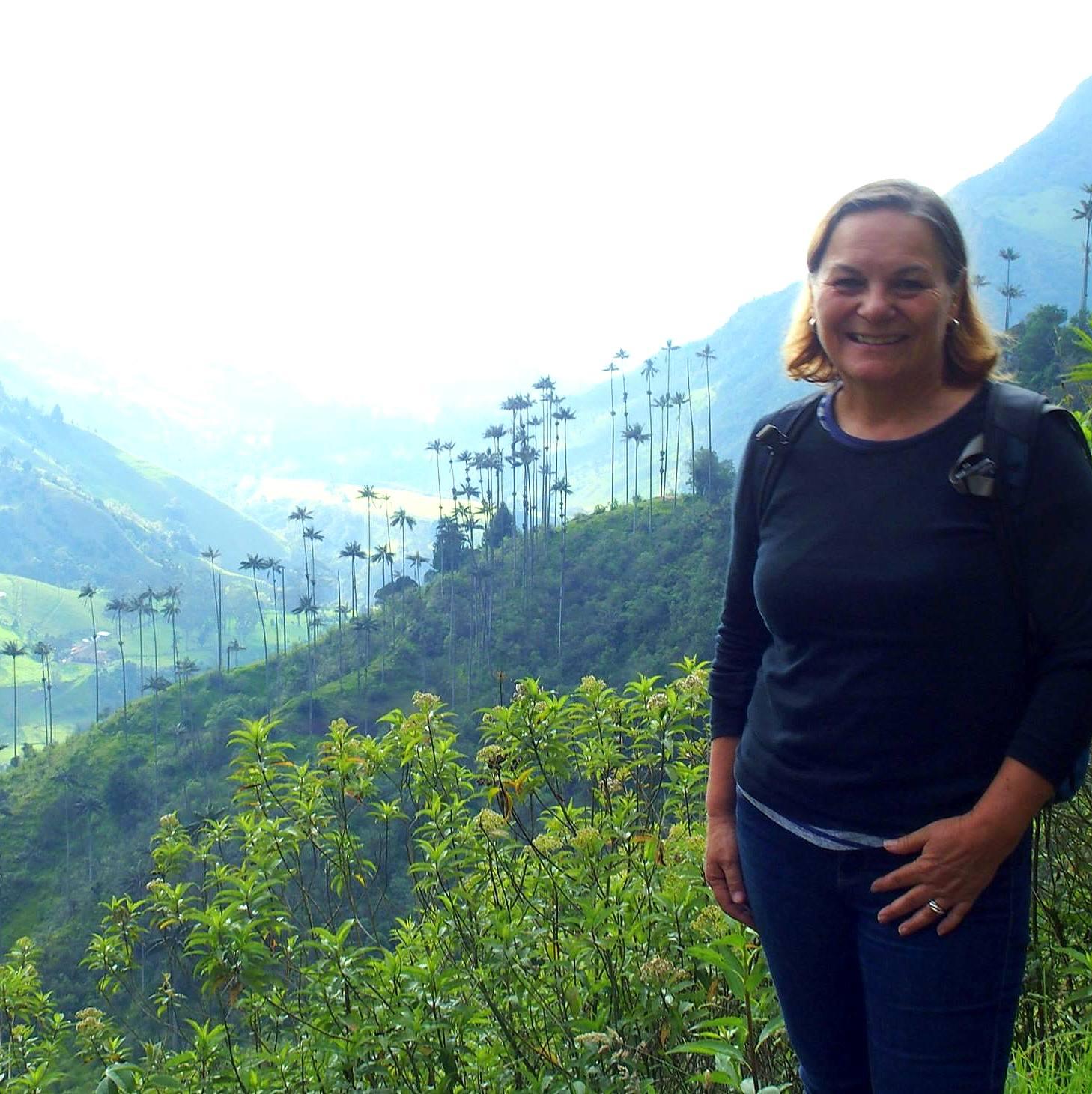 Trek dans la vallée de Cocora Salento Colombie