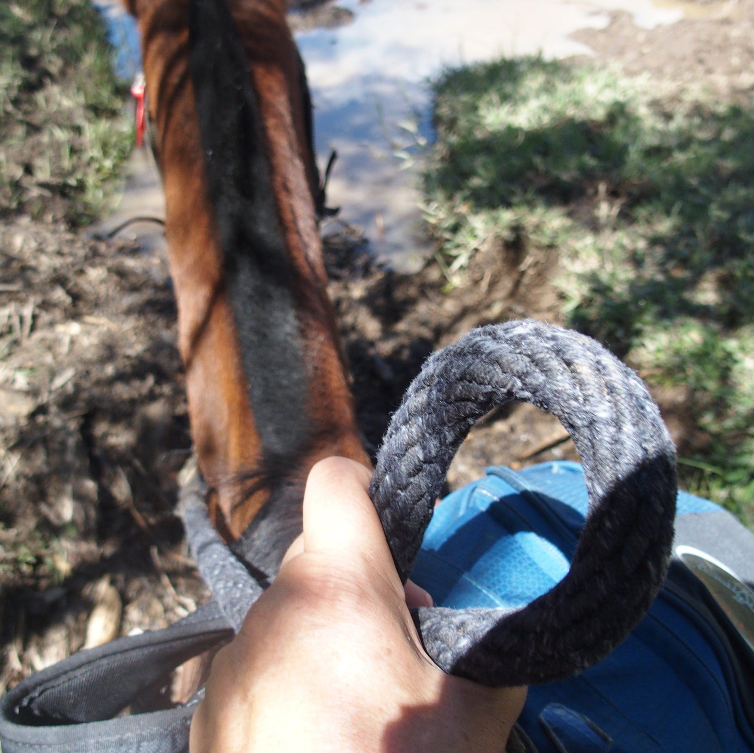 Visiter Salento à cheval